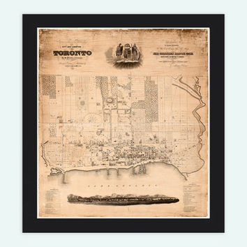 Old Map of Toronto, Ontario Canada 1842 Vintage map Toronto