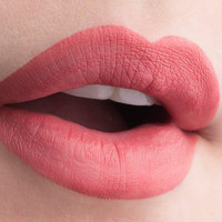 Indecent DNA Valentine Collection Liquid Lipstick Matte Finish Long Lasting Lip Paint Nude Pink Hi Pigment Liquid Lipstick