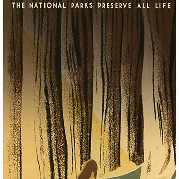 National Parks Wild Life Poster 11x17