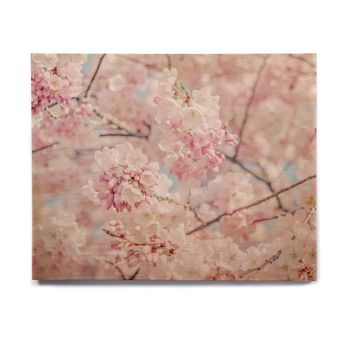 """Suzanne Harford """"Cherry Blossoms"""" Pink Pastel Photography Birchwood Wall Art"""