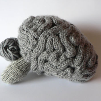 Handknit Anatomical Brain Learning Toy