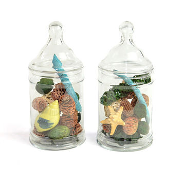 Apothecary Jars, Glass Cylinder Style (Set of 2) - Elegant Decorative Storage, Wedding Accent or Terrarium - Vintage Home Decor