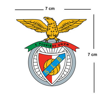 Benfica Team Crest Iron on Screen Print fabric Machine Washable transfer Águias | eBay