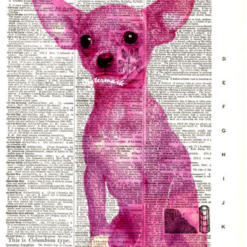 Chihuahua Dog - Pink - Vintage Dictionary Art Print - Page Size 8.5x11