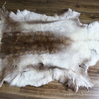 Exclusive Genuine Natural rare Reindeer Skin - Rug, Hide, Pelt,  Extra Large XXXL