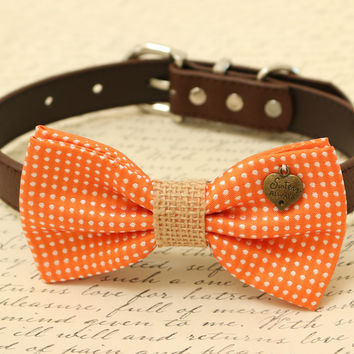 Orange Dog Bow Tie, Bow attached to brown dog collar, Pet wedding accessory, Charm, Sister always, dog lovers, Country Rustic wedding