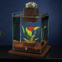 Fluval Fish Tank » Fluval Chi 5 Gallon Aquarium Kit | PetSmart