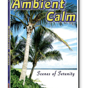 Ambient Calm DVD: Ultimate Relaxation Video