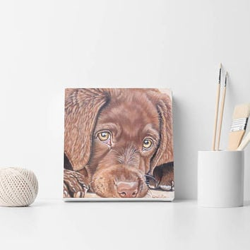 Custom dog portrait Custom dog painting Custom cat portrait Custom portrait From your photo painting Christmas gift Pets gift Cat portrait