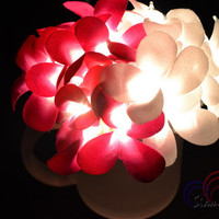 Frangipani Flower Lights Fairy Style For Bedroom and Romantic Lights Decoration 20 Lights /Set