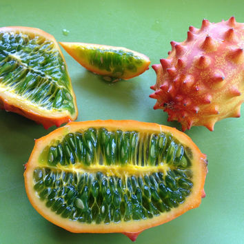 5 African Horned Melon Seeds Kiwano Organic Cucumis Metuliferus - Tasty Balcony Fruit Ground Vegetables Garden Home Plant - Heirloom non GMO