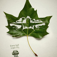 Cut-Away Leaf Art by Lorenzo Duran | DeMilked