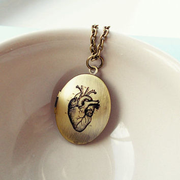 Anatomical Heart Large Locket Necklace, Vintage Pendant, Medical Illustration, Antique Chain,  Whimsical Jewellery