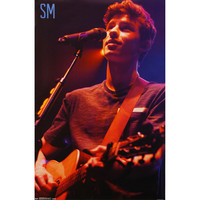 Shawn Mendes - Domestic Poster