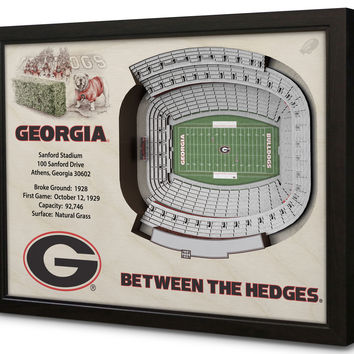 NCAA Georgia Bulldogs Football 3D Stadium View Wall Art Sanford Stadium