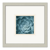 Symmetrical Flora Framed Matted Art