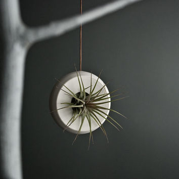 Round Hanging Air Planter - Handmade Fine White Porcelain - Small