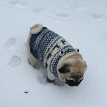 Knitting Pattern Dog Coat Pug : Shop Clothing For French Bulldogs on Wanelo