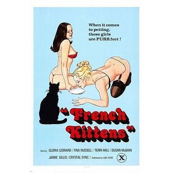 vintage FRENCH KITTENS 1976 X RATED movie poster 24X36 sexy provocative RARE