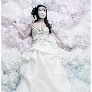 16 Large Tissue Paper Poms DIY Kit - Pick Your Colors - Bridal Photoshoot Backdrop - Photobooth - As Seen in Portlandia Season 2