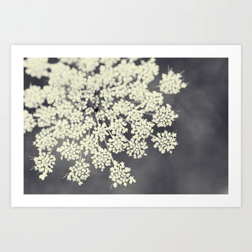 Black and White Queen Annes Lace Art Print by Erin Johnson