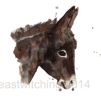 DONKEY print, burro, donkey, cute baby animal art