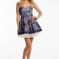 Two Tone Lace Dress with Tulle