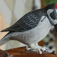 Wood carved Red, White and Black Flicker Bird; Woodcarved Flicker Bird; Carved Flicker Bird; Flicker Bird; Flicker; Bird Carving