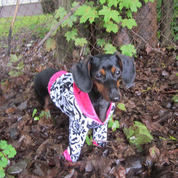 Black and White Very Soft Dog Hoodie Trimmed by GypsyEyesClothing