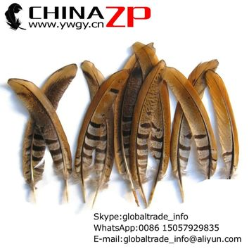 Exporting from CHINAZP Factory 50pcs/lot 15-20cm Length Unique Natural Reeves Venery Pheasant Tail Feathers