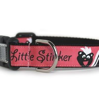 Little Stinker Dog Collar