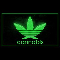Cannabis Marijuana High Life Drug Weed Hemp Focus Showing LED Light Sign 220026 Color Green