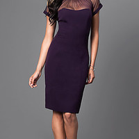 Short Sheer-Sleeve Knee-Length Party Dress