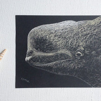 Canvas Print / Art Giclee Print / Whale / Marine life / Black and White / Pastel Drawing