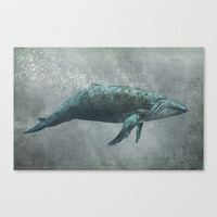Whale Song Stretched Canvas by Terry Fan