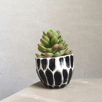 Faceted Modern Planter - Succulent Indoor Planter - Small Planter - Black and White Planter