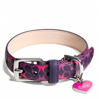 WAVERLY SIGNATURE PET COLLAR
