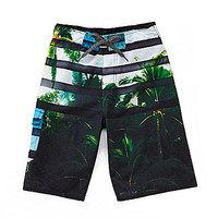 First Wave 8-20 Photo Real Palm Tree Swim Trunks - White