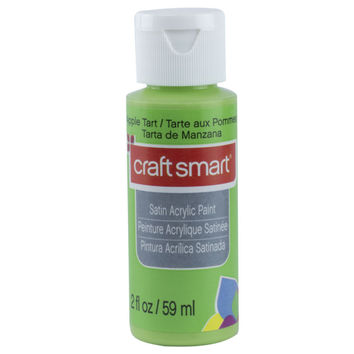 Satin Acrylic Paint By Craft Smart®