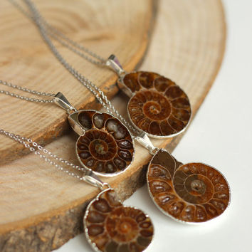 OOAK Genuine Ammonite fossil slice necklace, amonite slice necklace,silver electroplated a perfect gift wedding, christmas, mother's day