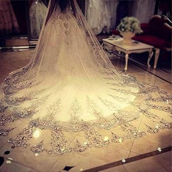 4 Meter Cathedral Ivory/White Bridal Veil with Lace Edge Tulle Bling Wedding Bridal Veil