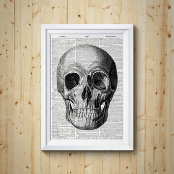 Skull Human Head Anatomy Medical Study Dictionary Book Page Print Anatomy Art on Upcycled Book Page