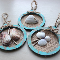 Rustic Sea Shell Beach Holiday Ornaments , Year Round Coastal Decoration , Natural Home Decor, Nautical Ornament Collection