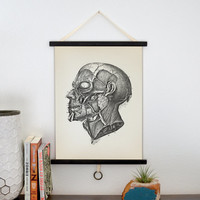 Vintage Anatomy Pull Down Chart Reproduction. Facial Muscles. - CP-001CV