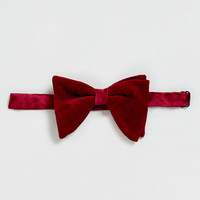 Burgundy Velvet Oversize Bow Tie - Ties & Pocket Squares - Shoes and Accessories - TOPMAN