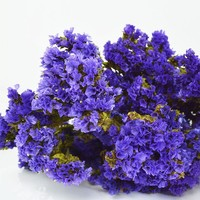 "Preserved Statice Bundle in Purple - 4 oz Bunch - 13-16"" Tall"