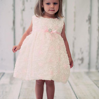Sweet Baby Satin Floral Embroidered Dress