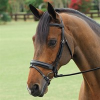 Vespucci Traditional Dressage Bridle | Dover Saddlery
