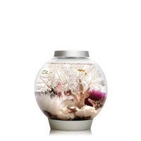biOrb CLASSIC 15 Aquarium with LED Light - 4 Gallon, Silver