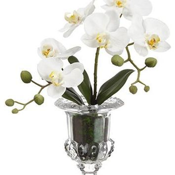 "White Silk Phalaenopsis Orchid Arrangement in Glass Vase - 14"" Tall"